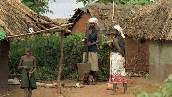 """O estudo considera que """"quase tudo o que se come"""" na Guiné-Bissau é produzido pelas mulheres e que no dia em que saírem da atividade produtiva a própria economia do país morre"""