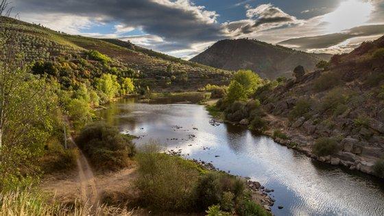 As causas do desaparecimento são desconhecidas e a última localização conhecida é junto ao rio Tua