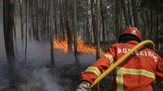 O IPMA colocou também vários concelhos dos 18 distritos de Portugal continental em risco elevado