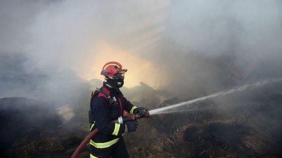 Em risco elevado de incêndio estão ainda vários concelhos de todos os 18 distritos de Portugal continental