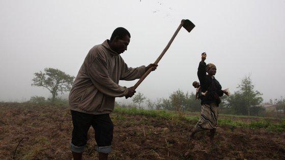 O projeto está a ser implementado em coordenação com o Governo moçambicano nas províncias de Maputo e Gaza