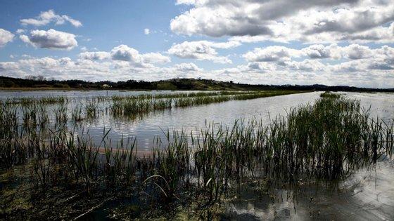 O projeto vai procurar combater a seca e os efeitos das alterações climáticas, que têm reduzido o caudal do rio no verão
