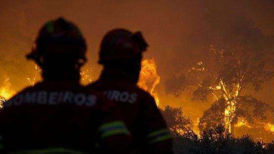 """O movimento diz que o governo respondeu ao problema dos incêndios com """"programas burocráticos e mal concebidos"""""""