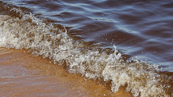 """Joaquim Peres, presidente da empresa, sublinhou que está em causa """"não só o consumo de água, mas também a situação turística"""""""
