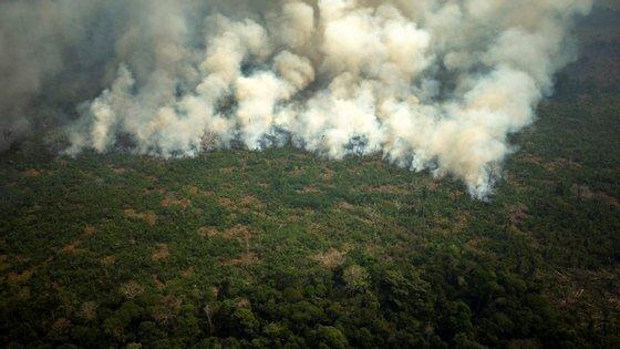 Desde janeiro, já se registaram 78.383 incêndios no Brasil, um número que não era tão alto desde 2013