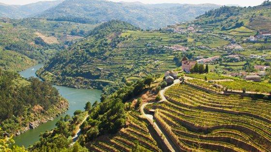 A CIM Douro representa 19 municípios e mais de 200 mil habitantes