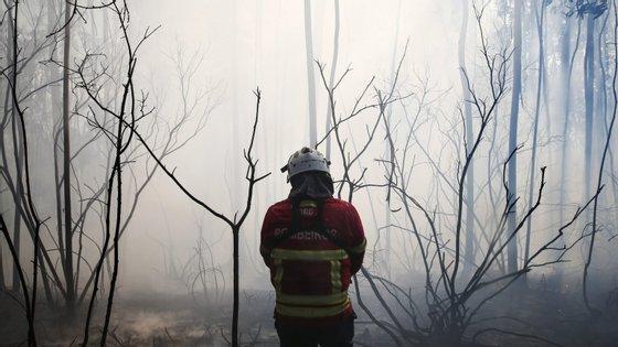 """Os dois bombeiros decidiram atear fogos no concelho de Alenquer """"para incrementar a ação aos fogos por parte dos Bombeiros Voluntários de Alenquer"""""""