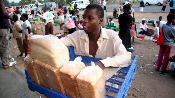 """""""Peço ao governo do Zimbabué que cumpra o compromisso de fome zero sem qualquer discriminação"""", disse Hilal Elver"""