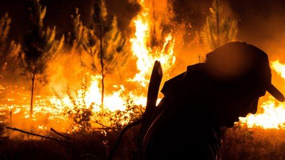 Foto de arquivo de um bombeiro chileno a tentar extinguir um fogo no município de Nacimiento, na região de Biobio, em fevereiro deste ano.