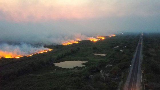 Os incêndios na Amazónia aumentaram 84% no período em relação ao ano passado