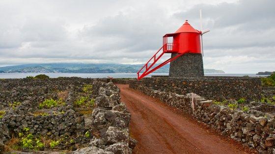 Desde 03 de novembro que a zona oeste do Faial tem vindo a registar um aumento da atividade sísmica