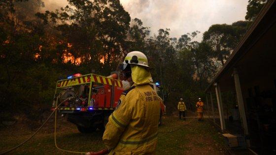 """""""Não há qualquer indício de que os maiores fogos tenham sido causados por mão criminosa"""", disse o porta-voz da polícia"""