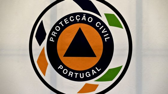 As 28 viaturas ligeiras, 22 da marca Peugeot e seis da Opel, Astra e ainda SEAT, estariam ao serviço da Proteção Civil desde o verão de 2014