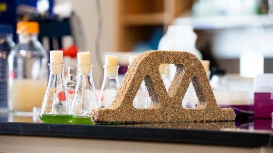 Colónias das bactérias são injetadas numa solução de areia e gelatina e o carbonato de cálcio acaba por solidificar a gelatina, que em conjunto com a areia forma um tijoloColónias das bactérias são injetadas numa solução de areia e gelatina e o carbonato de cálcio acaba por solidificar a gelatina, que em conjunto com a areia forma um tijolo, que se for cortado a meio consegue voltar a crescer