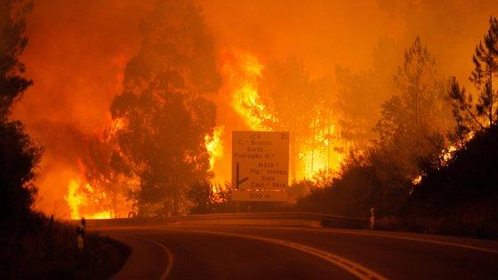 """""""O nosso ensinamento e experiências, boas e más, como reagimos aos incêndios são para eles [australianos] pistas para que caminhem naquilo que nós fizemos bem e evitar aquilo que não fizemos tão bem"""", frisou o presidente da Agência para a Gestão Integrada dos Fogos Rurais"""
