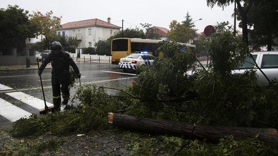 Catorze distritos de Portugal continental estão esta segunda-feira sob aviso amarelo devido à previsão de vento moderado a forte de norte/nordeste