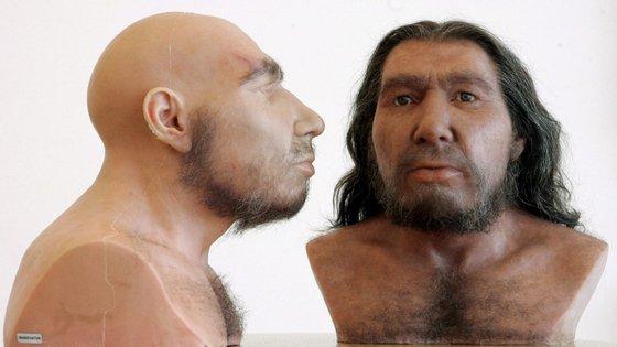 Segundo os resultados, as populações neandertais ao longo da costa já pescavam e recolhiam moluscos