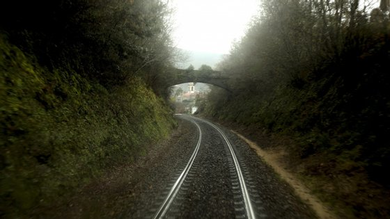 De acordo com a IP, a circulação ferroviária foi reposta nas duas vias entre o Setil e Santarém às 10h50, embora no local do acidente se faça com afrouxamento para os 60 quilómetros/hora nas duas vias