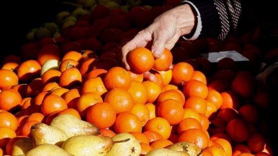 """""""Um dos passos que o Governo devia dar era [nós, os agricultores] continuarmos a produzir e a vender nas feiras diretamente"""", disse António Machado"""