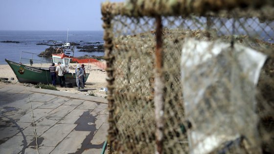 Os testes devem começar a ser feitos na sede da associação e abranger 2000 pescadores, da zona da Póvoa de Varzim e Vila do Conde