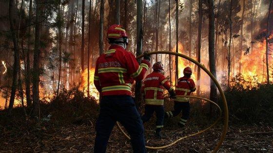 Bombeiros de estagiários cumprem 12 meses de formação e 6 meses em ambiente de trabalho acompanhado.