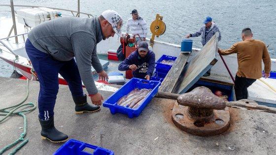 Processo envolve as várias associações do setor das pescas, os municípios, as forças de segurança, os hospitais, o Ministério da Saúde e o Ministério do Mar