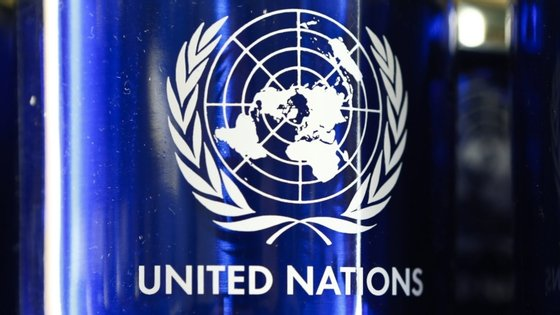 """Estes ecossistemas, que continuam em declínio, são """"eficazes soluções naturais para o combate às alterações climáticas e contribuem para o sustento de comunidades afetadas por fatores de stress como a atual pandemia do Covid-19"""", diz a ONU"""