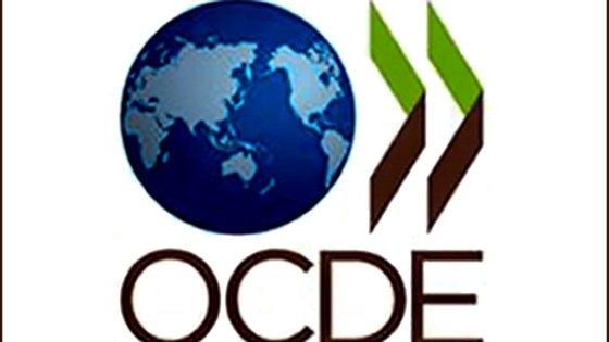 Os jovens (entre os 15 e os 24 anos) foram particularmente afetados pela crise segundo a OCDE, com a taxa de desemprego a aumentar 5,5 pontos percentuais