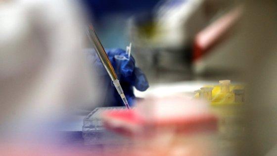 A equipa da Universidade Católica está confiante de que o modelo da vacina pode ser favorável, uma vez que se baseia em investigações anteriores contra vírus respiratórios