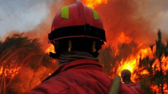 """Combate às chamas está a ser dificultado pelos """"acessos difíceis"""" e pelo vento, que """"sopra com muita intensidade e muda constantemente de direção"""", segundo a Proteção Civil"""
