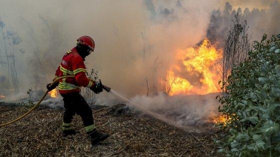 Cento e um operacionais que combatem o fogo contam com o apoio de 26 viaturas e de trêsmeios aéreos