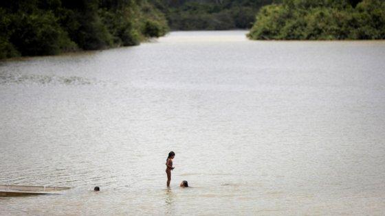 As terras sem destino na floresta amazónica são áreas que ainda não foram classificadas como zonas de proteção ou para uso sustentável de recursos naturais