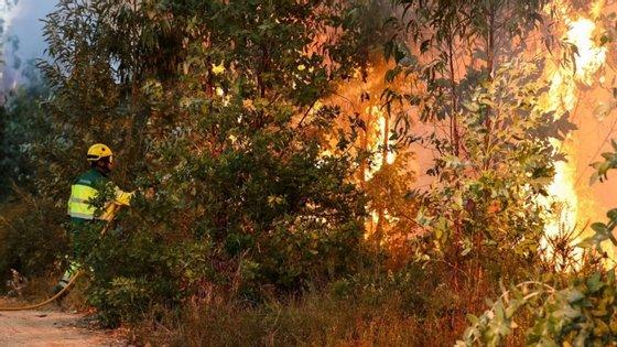 """O programa é dirigido a territórios com """"elevada perigosidade de incêndio"""""""