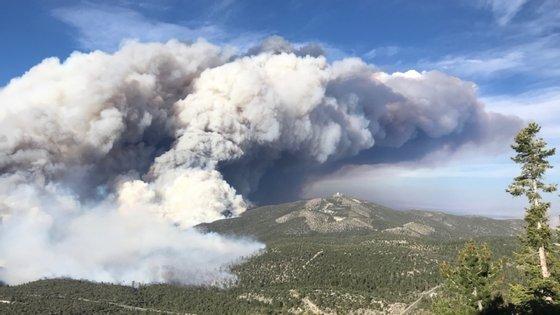 O vento forte está a dificultar o combate aos incêndios no Nevada