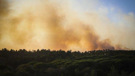 """O fogo lavrou """"próximo de habitações e floresta, no interface urbano com a zona mista agrícola e florestal"""""""