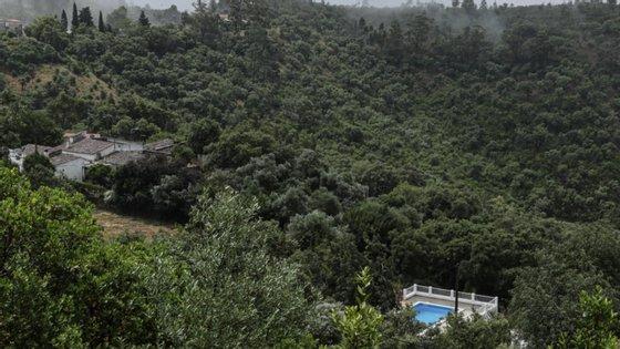 A ANEPC destaca que a humidade relativa do ar será inferior a 30% no interior e no Algarve
