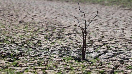 Os valores de precipitação foram muito inferiores ao valor normal em quase todo o território, exceto no Algarve e em particular na região de Faro onde foram superiores
