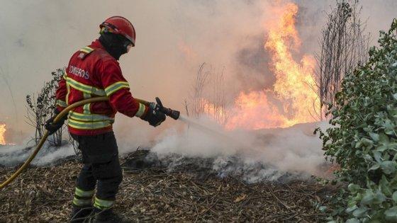 O fogo deflagrou pelas 13:00 de sábado, em Janeiro de Baixo, e foi dominado pouco depois das 22:00