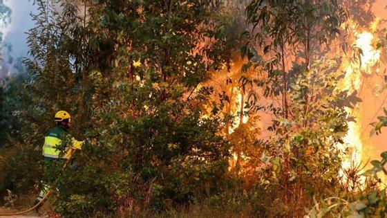 Dez distritos, maioritariamente no interior, estão em estado de alerta especial laranja nas próximas 72 horas devido a risco de incêndio rural muito elevado ou máximo