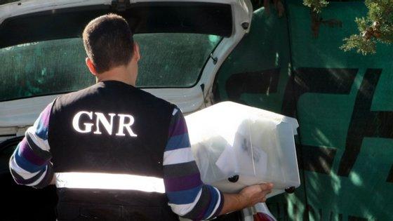 Segundo a GNR, a investigação decorre há aproximadamente um ano