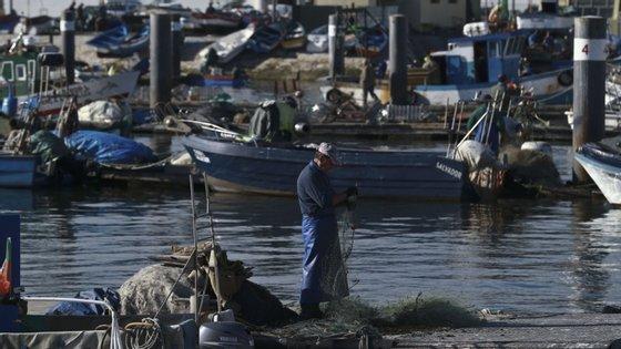 O montante é concedido pelas entidades bancárias que celebrem um protocolo com o Instituto de Financiamento da Agricultura e Pescas