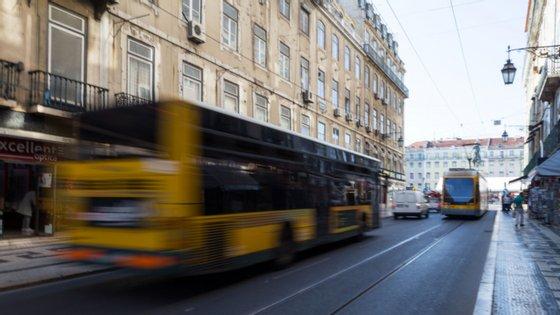 A CIM do Ave compreende os municípios de Guimarães, Famalicão, Vizela, Fafe, Póvoa de Lanhoso, Vieira do Minho, Cabeceiras de Basto e Mondim de Basto, correspondendo a cerca de 425 mil habitantes