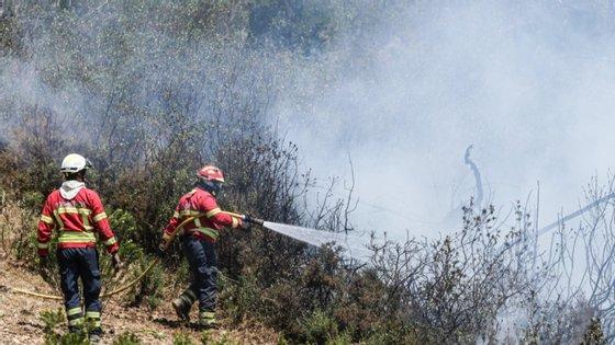 O fogo lavrou numa zona florestal de sobreiros, pinheiros e eucaliptos, além de montado