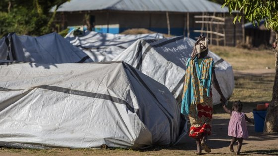 Ataques em Cabo Delgado já afetaram 250 mil pessoas