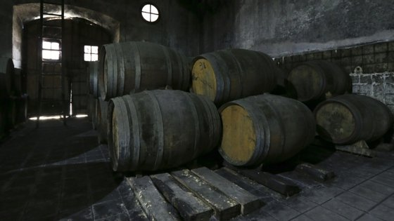 Em 2019, foram transformadas 108.000 pipas de vinho do Porto na mais antiga região demarcada e regulamentada do mundo