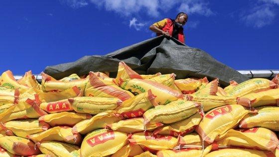 A ação do Programa está centrada, nos últimos anos, no apoio à ação do governo para alcançar os objetivos de desenvolvimento sustentável, particularmente a erradicação da fome e da malnutrição