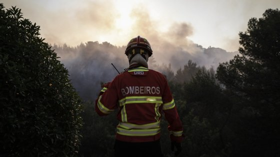 O bombeiro Carlos Carvalho, de 40 anos, morreu esta quinta-feira no Hospital de Santa Maria, em Lisboa, para onde tinha sido transportado de helicóptero após sofrer queimaduras graves no combate ao incêndio que ocorreu no dia 13 deste mês em Castro Verde