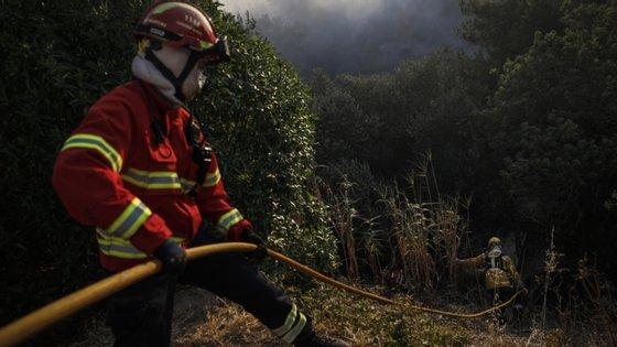 O incêndio agrícola, que foi dado como dominado às 02h22 do dia 14 deste mês, devastou uma área estimada em mais de dois mil hectares de seara, pasto e mato