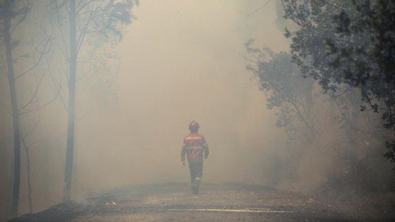 """Devido ao """"significativo agravamento"""" do risco de incêndio rural, Portugal continental está em situação de alerta até terça-feira"""