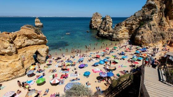 Nos últimos dias, as praias de Carcavelos e de São Pedro do Estoril, em Cascais, e a praia do Magoito, em Sintra, chegaram a estar interditadas a banhos, depois de ter sido detetada a presença de medusas 'Velella velella'